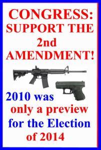 CONGRESS SUPPORT THE 2ND AMENDMENT