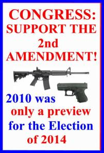CONGRESS SUPPORT THE 2ND AMENDMENT