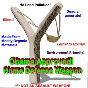 Obama Approved Home Defense Weapon