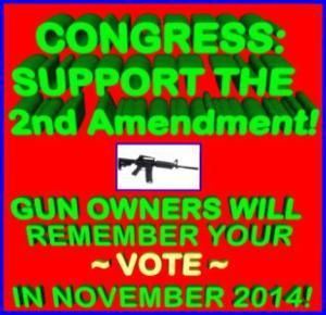 WARNING TO CONGRESS REFER GUN CONTROL